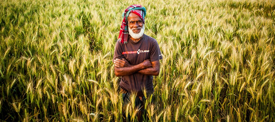 changing pattern of agriculture in bangladesh essay India: climate change impacts june 19  simulations to arrive at likely impacts on agriculture,  peaked in india and bangladesh around 2001 and have not.