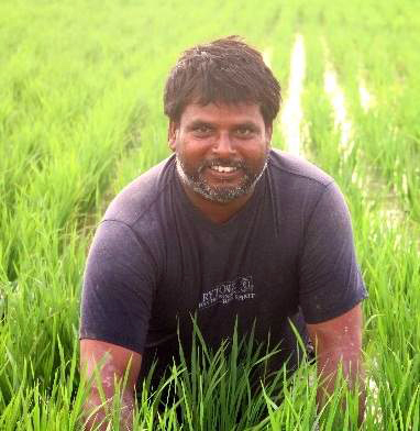 Ramawadh Chaudhary in his field.